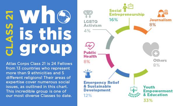 infografic 8